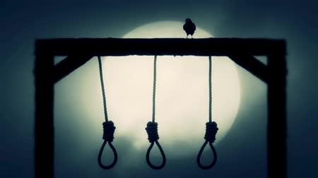 until : Nooses Hanging on the Gallows with a Raven on a Full Moon Spooky Night