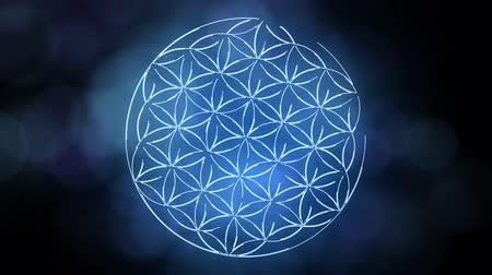 sagrado : The Flower of Life Forming Sacred Geometry Symbol