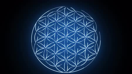 szentelt : The Flower of Life Forming Sacred Geometry Symbol