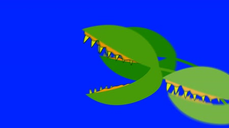 venuše : Creepy Venus Fly Traps Attacking on a Blue Screen Background