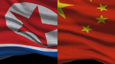 supremo : North Korea And China Waving Flags In Alpha Channel Vídeos