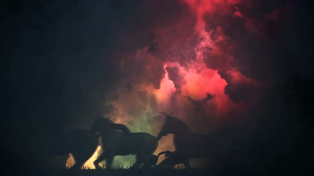 yırtıcı hayvan : Herd of Horses in Running Through a Storm Stok Video