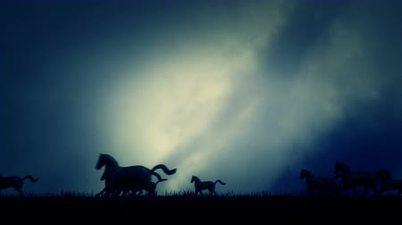 arabian horses : Herd of Horses in Running Through a Cloudy Field Animation