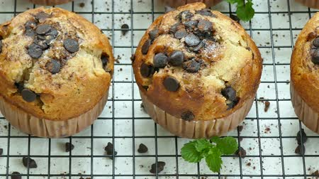 muffin : Muffins banana chocolate chip Stock Footage