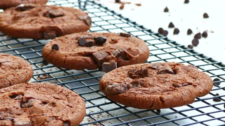 duplo : Close-up Chocolate cookies