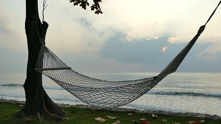 hamak : Empty hammock on the beach