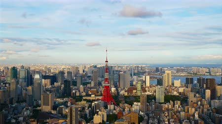 tokio : Time lapse view at Tokyo city with Tokyo Tower in japan Wideo