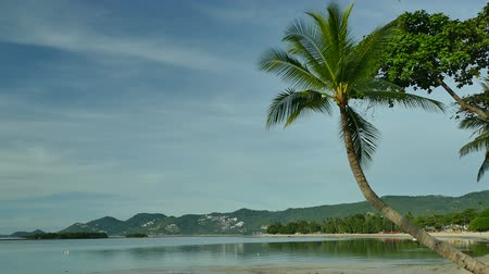 noix de coco : Nature with tropical sea and beach on white cloud and blue sky