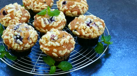 desszertek : Muffins with Blueberry Stock mozgókép