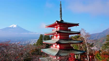 fuji : Colorful Autumn with Mountain Fuji and Chureito Pagoda in Japan around Lake Kawaguchiko Stock Footage