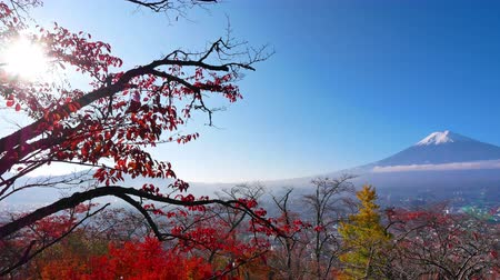 queda de neve : Colorful Autumn with Mountain Fuji in Japan around Lake Kawaguchiko