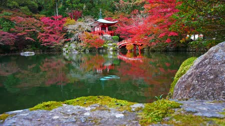 red maple : Daigo-ji temple with colorful maple trees in autumn at Kyoto,Japan
