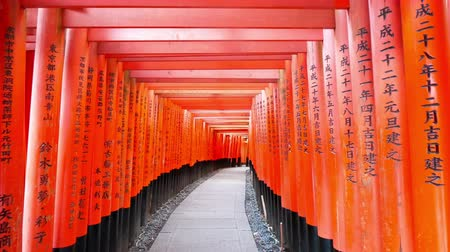 Fushimi Inari Shrine's fame torii in Kyoto, Japan