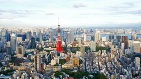 Tokyo city with Tokyo Tower in japan