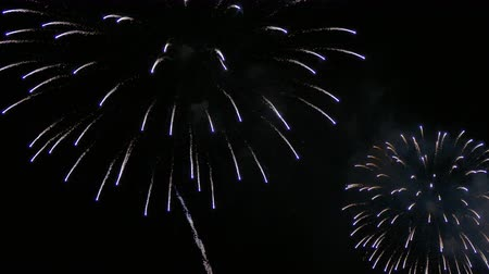 4K clip Beautiful Firework display