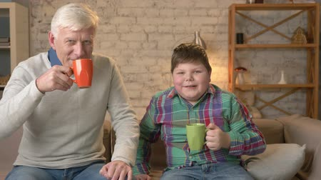 prarodič : Grandfather and grandson are sitting on the couch and drinking tea, coffee, looking at the camera. An old man and a young fat boy are sitting on the couch. Home comfort, family idyll, cosiness concept, difference of generations 60 fps