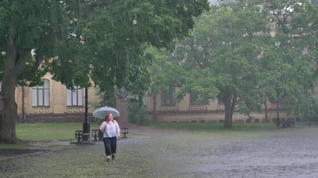 homály : Fat ginger girl is running in park under rain, holding umbrella