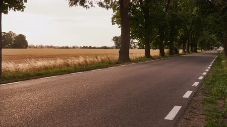Country road before sunset. Timelapse 4K