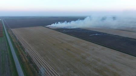 sas : Burning straw in the fields after harvesting wheat crop.