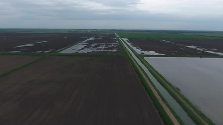 The rice fields are flooded with water. Flooded rice paddies. Agronomic methods of growing rice in the fields. Flooding the fields with water in which rice sown. View from above. Stock Footage