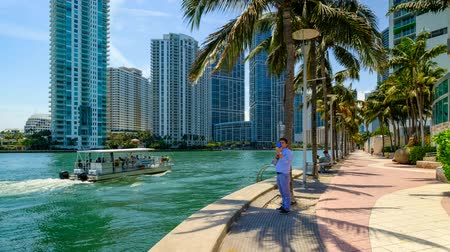 árvores : Time lapse video of Downtown Miami along the Miami River inlet with Brickell Key in the background with boats cruising by and visitors enjoying the view. Vídeos