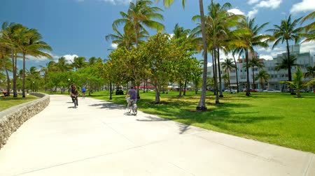 visitantes : High definition video of the promenade in Lummus Park along the scenic South Beach area of Miami Beach. Stock Footage