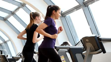 atletismo : Two young women training  Description: Gym video, two young women training on running machines, treadmill, different angles