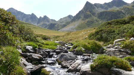 rivulet : Landscape of a mountain creek, on the Pyrenees of Andorra. Little brook with the mountains in the background and with the brightness of the sky in the water.