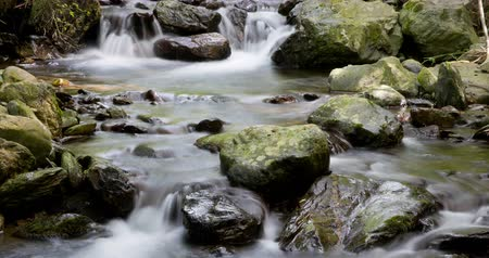 seda : Mountain river with silk effect, in which the movement of the sun through the vegetation looks, conveying to feeling of harmony, purity ... Time Lapse - long exposure 4K.Smooth motion camera: PAN Vídeos