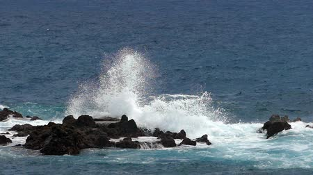 sheen : Waves crashing on lava rocks on the coast of the island of La Palma. Two play speed. Slow motion.