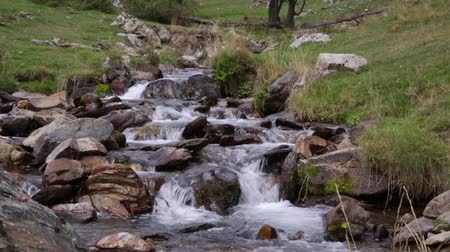 pyreneje : Mountain river flowing through a small valley in the Pyrenees of Catalonia (Spain). Motion camera: Tilt down. Dostupné videozáznamy