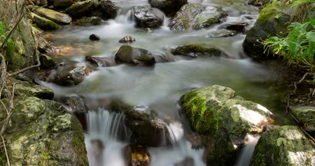 pyreneje : Mountain river with silk effect 11, in which the movement of the sun through the vegetation looks, conveying a feeling of harmony, purity ... Time Lapse - long exposure 4K.Smooth motion camera: PAN Dostupné videozáznamy