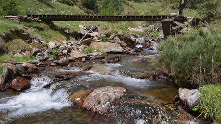 pyreneje : Mountain river with old wooden footbridge in the Pyrenees of Catalonia (Spain).