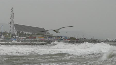 Surge with big waves, strong wind and poor visibility. Slow Motion. Groundswell in the Mediterranean sea in Barcelona city beaches. Стоковые видеозаписи