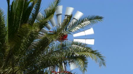 Old vintage style windmill rotating between palm branches on sunny day. Symbol of the use of wind as sustainable energy. Стоковые видеозаписи