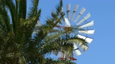 Old vintage style windmill rotating between palm branches on sunny day. Symbol of the use of wind as sustainable energy. Videos