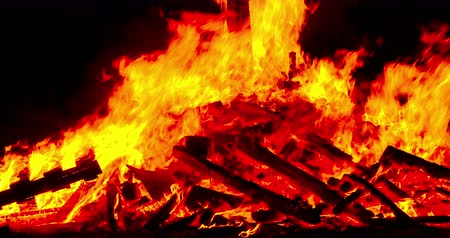 Close-up of a bonfire with the flames in motion.