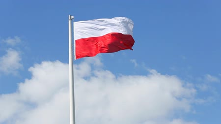polonês : Polish flag waving in the wind