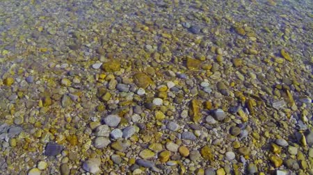 margem do rio : Pebbles in the water at a river bank. Stock Footage