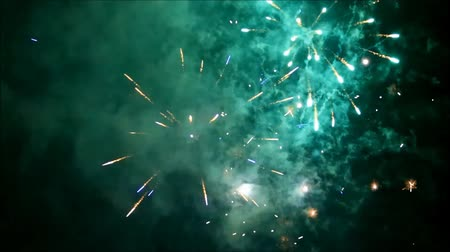 Colorful firework explosion