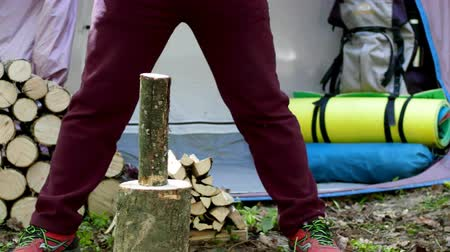 koçan : Chop wood with an ax in nature to remove split firewood. Stok Video
