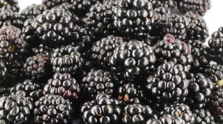 yoghurt : Wild blackberries