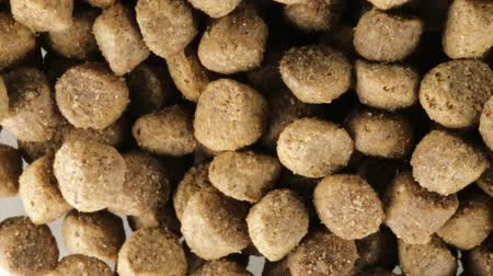 fıstık : Crunchy biscuits for dogs