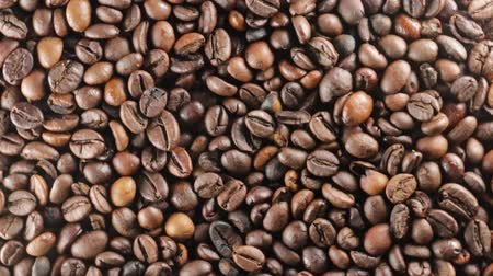 expressed : Coffee beans
