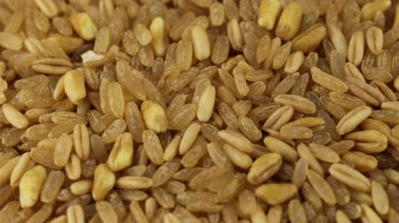 basmati : Spelled, rice and barley