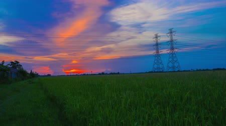 kutup : Electric pole, High voltage towers and sky sunset 4K, day to night, Timelapse Stok Video