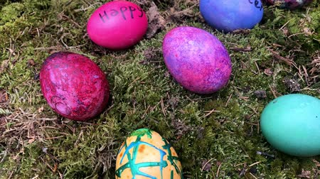 Happy Easter - Colourful Easter eggs in green moss.