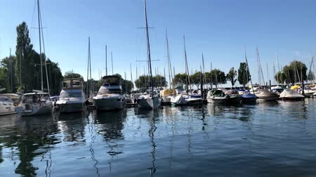 kruvazör : Boats at Lake Constance Harbor Stok Video