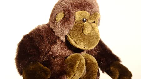 yumuşaklık : monkey soft toy rotating over white background Stok Video