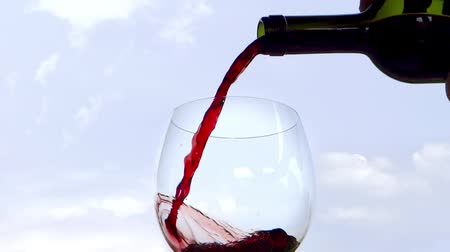 vinho : red wine